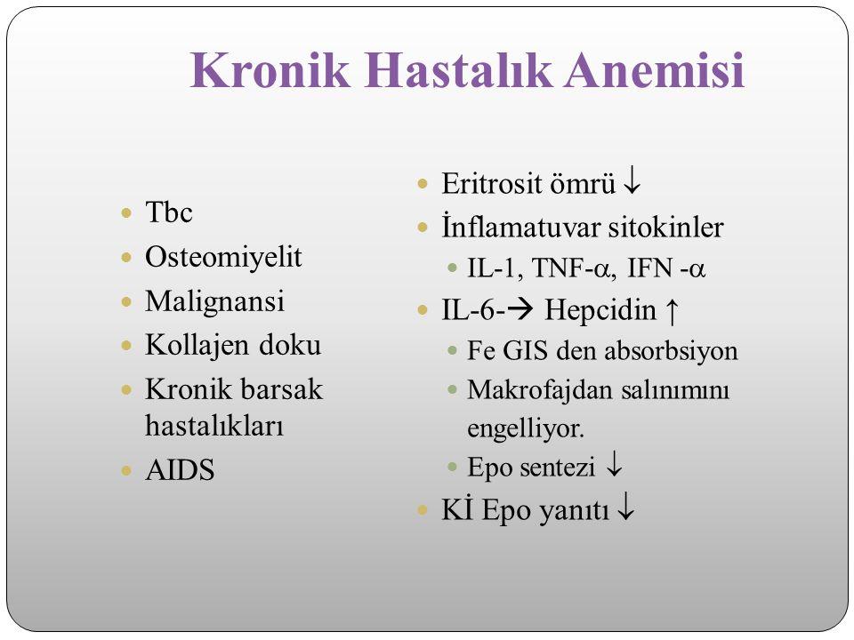 Kronik Hastalık Anemisi