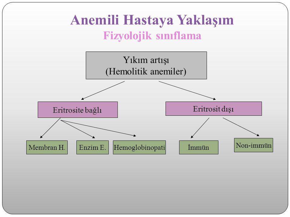 Anemili Hastaya Yaklaşım Fizyolojik sınıflama