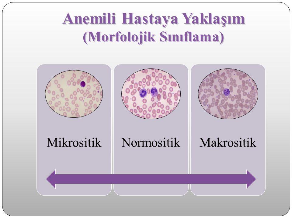 Anemili Hastaya Yaklaşım (Morfolojik Sınıflama)