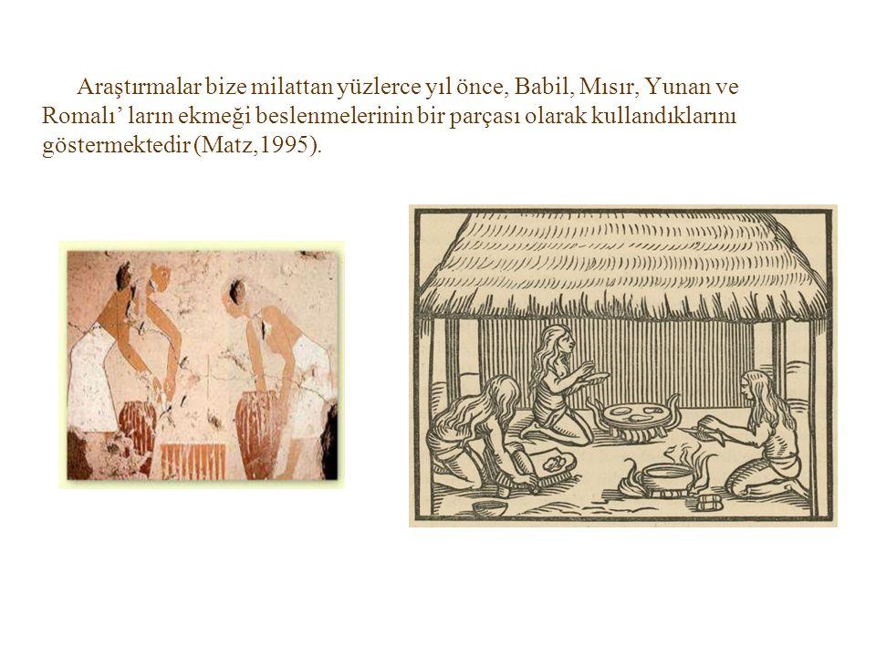 Araştırmalar bize milattan yüzlerce yıl önce, Babil, Mısır, Yunan ve Romalı' ların ekmeği beslenmelerinin bir parçası olarak kullandıklarını göstermektedir (Matz,1995).
