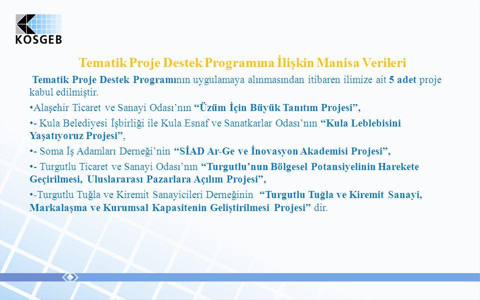 Tematik Proje Destek Programına İlişkin Manisa Verileri