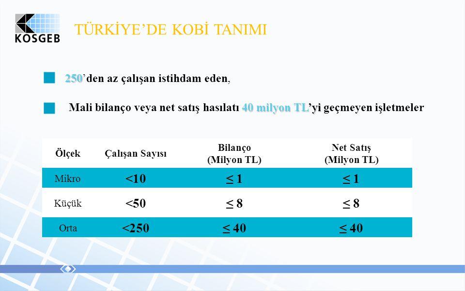TÜRKİYE'DE KOBİ TANIMI