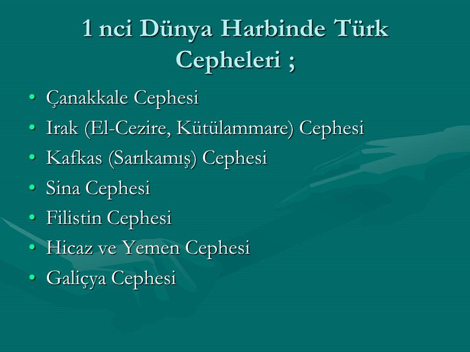 1 nci Dünya Harbinde Türk Cepheleri ;
