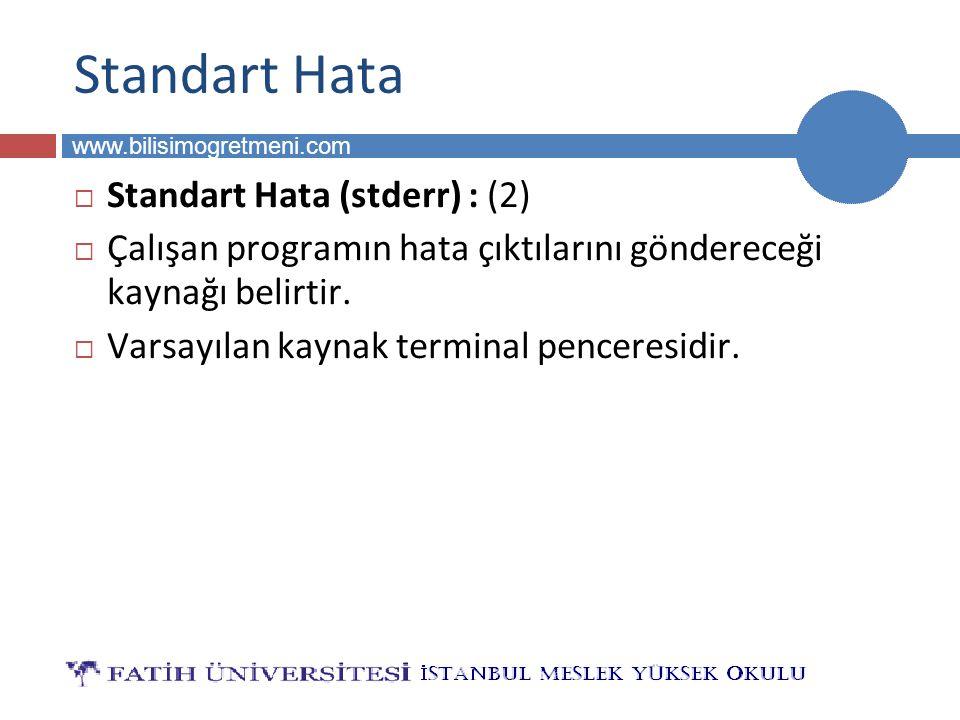 Standart Hata Standart Hata (stderr) : (2)