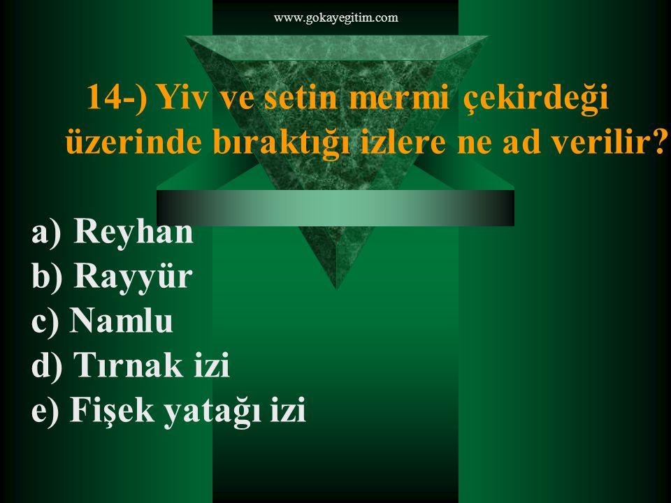 www.gokayegitim.com 14-) Yiv ve setin mermi çekirdeği üzerinde bıraktığı izlere ne ad verilir Reyhan.