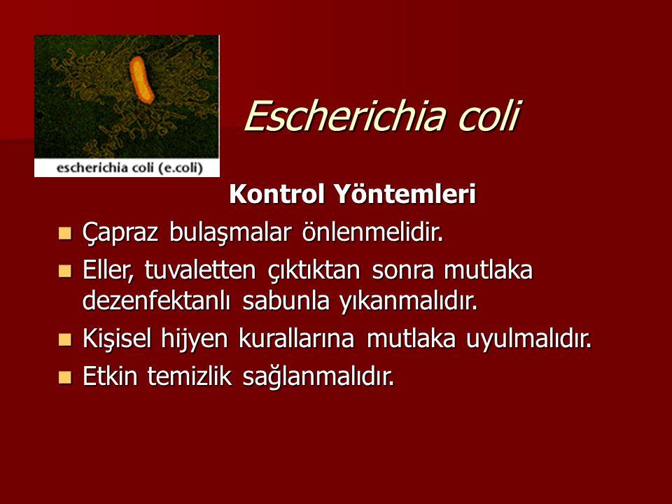 Escherichia coli Kontrol Yöntemleri Çapraz bulaşmalar önlenmelidir.