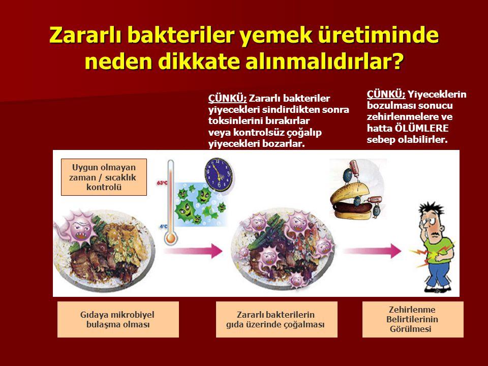 Zararlı bakteriler yemek üretiminde neden dikkate alınmalıdırlar