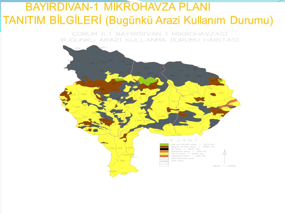 BAYIRDİVAN-1 MİKROHAVZA PLANI