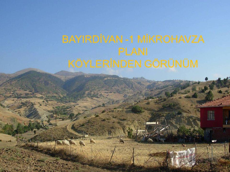 BAYIRDİVAN -1 MİKROHAVZA PLANI