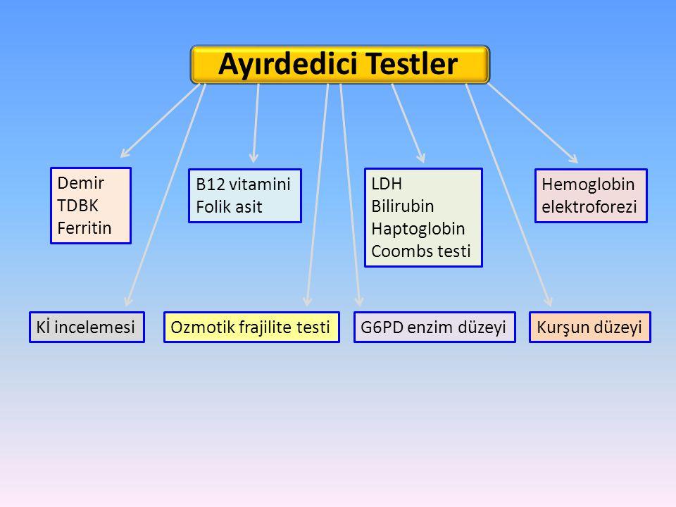 Ayırdedici Testler Demir TDBK Ferritin B12 vitamini Folik asit LDH