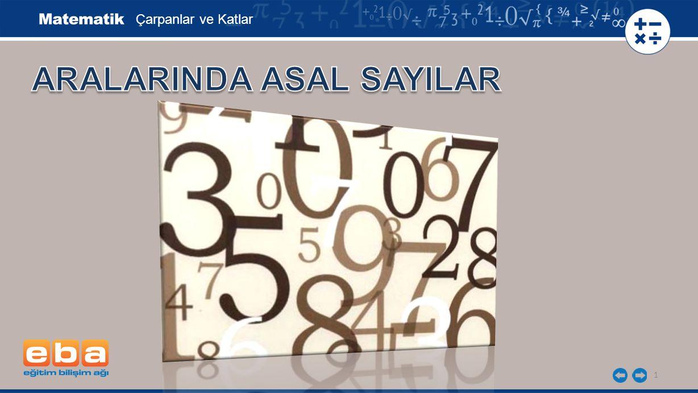 ARALARINDA ASAL SAYILAR