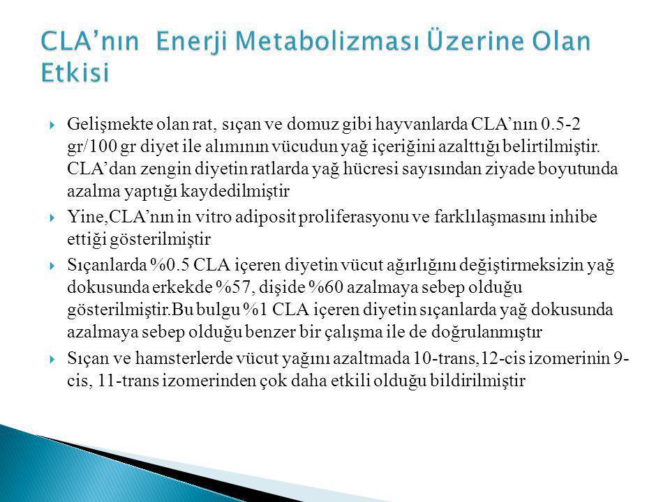 CLA'nın Enerji Metabolizması Üzerine Olan Etkisi