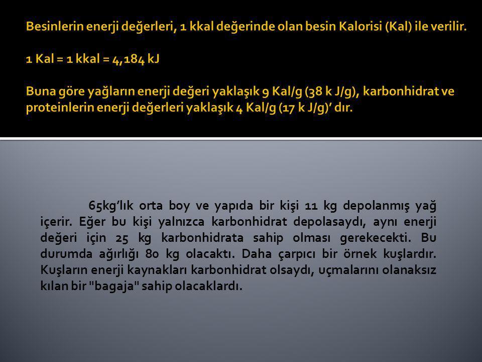 Besinlerin enerji değerleri, 1 kkal değerinde olan besin Kalorisi (Kal) ile verilir. 1 Kal = 1 kkal = 4,184 kJ Buna göre yağların enerji değeri yaklaşık 9 Kal/g (38 k J/g), karbonhidrat ve proteinlerin enerji değerleri yaklaşık 4 Kal/g (17 k J/g)' dır.