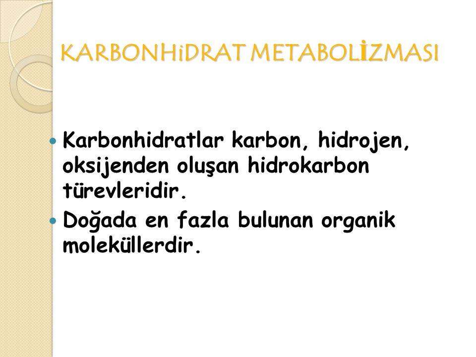 KARBONHiDRAT METABOLİZMASI