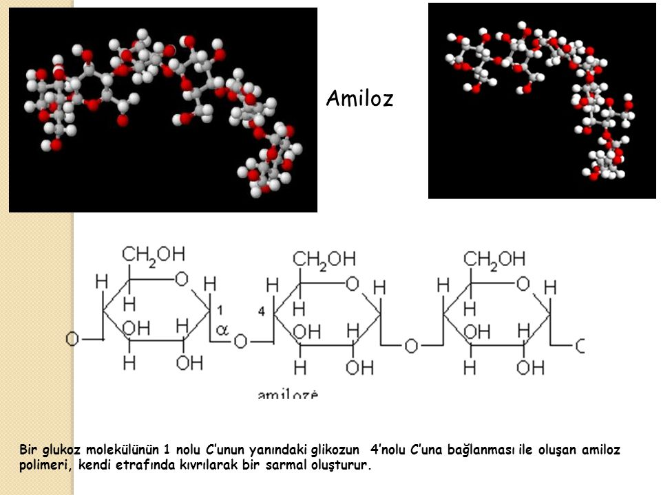 Amiloz