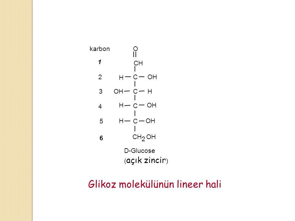Glikoz molekülünün lineer hali