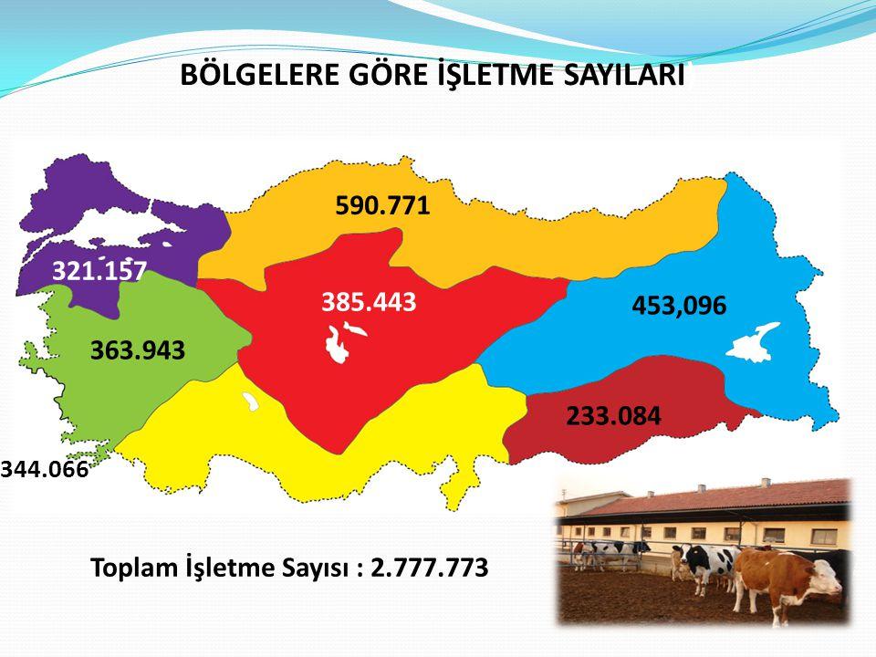 BÖLGELERE GÖRE İŞLETME SAYILARI) Toplam İşletme Sayısı : 2.777.773