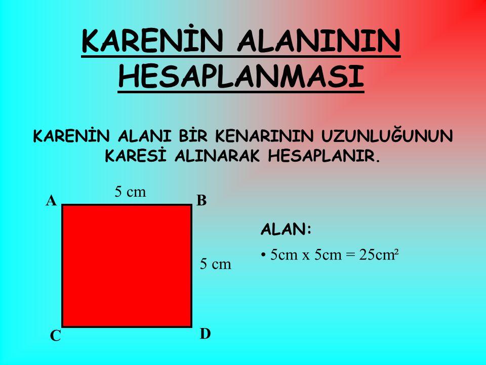 KARENİN ALANININ HESAPLANMASI
