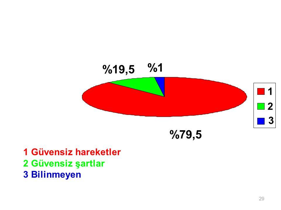 %1 %19,5 %79,5 1 2 3 1 Güvensiz hareketler 2 Güvensiz şartlar