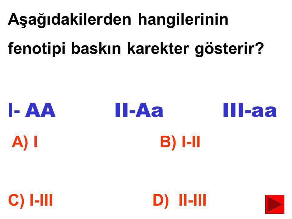 I- AA II-Aa III-aa Aşağıdakilerden hangilerinin