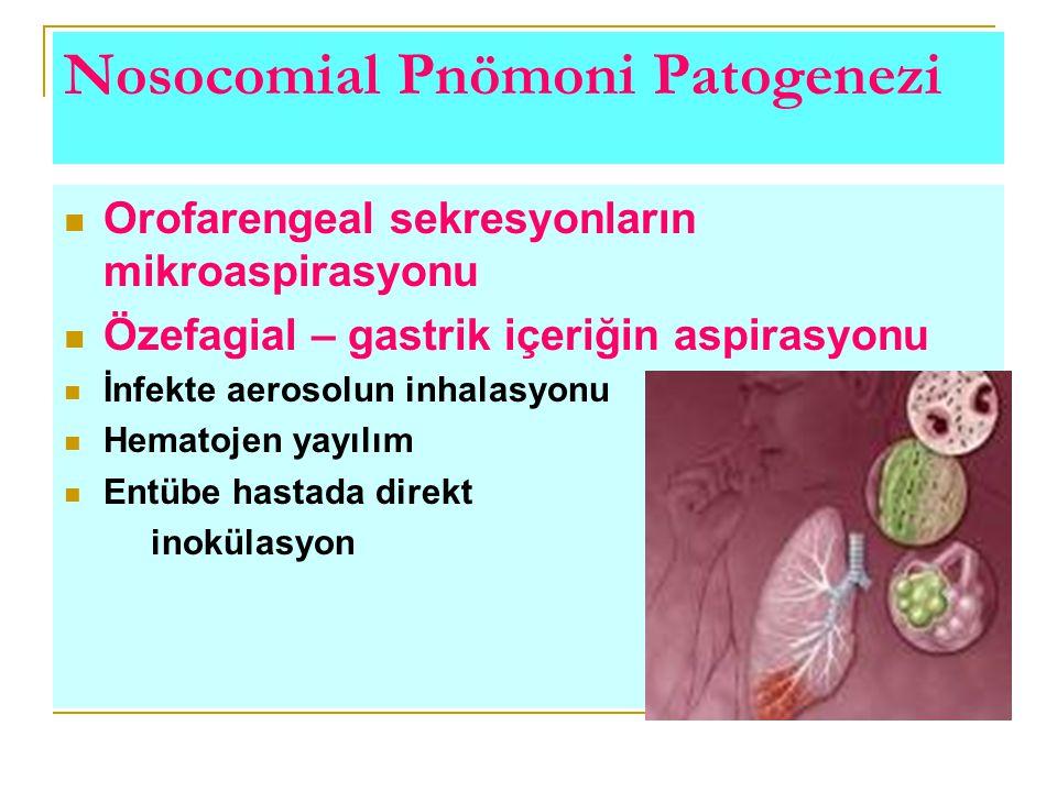 Nosocomial Pnömoni Patogenezi