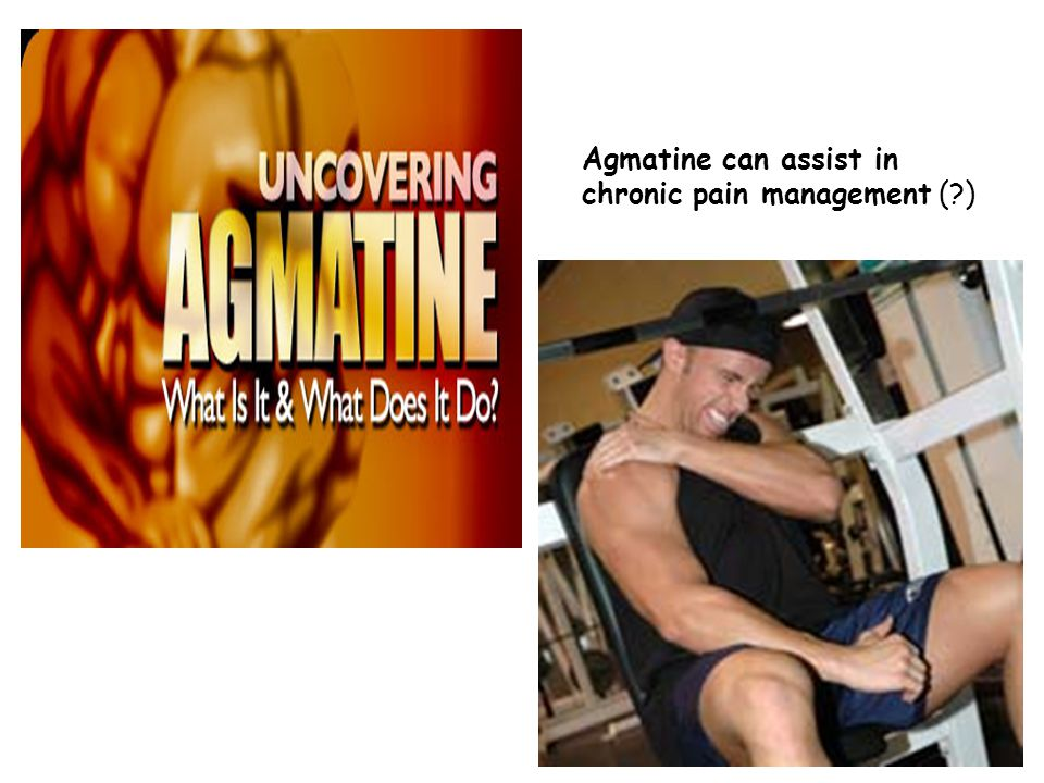 Agmatine can assist in chronic pain management ( )