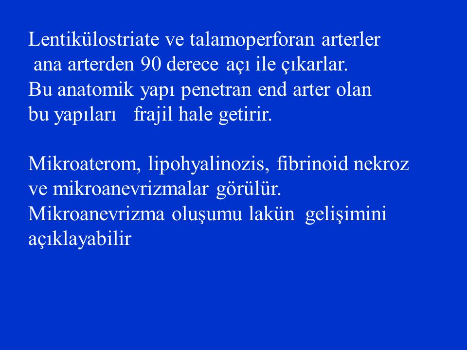 Lentikülostriate ve talamoperforan arterler