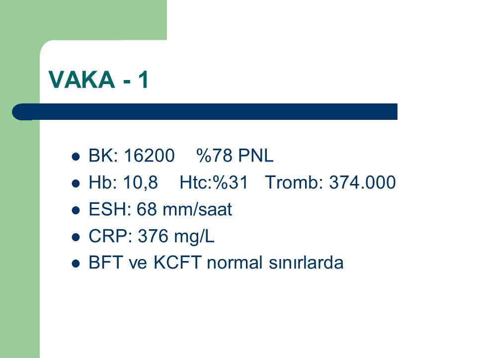 VAKA - 1 BK: 16200 %78 PNL Hb: 10,8 Htc:%31 Tromb: 374.000