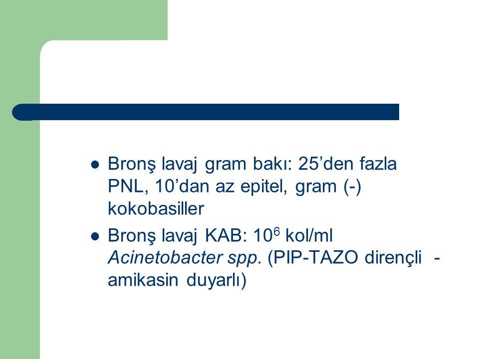 Bronş lavaj gram bakı: 25'den fazla PNL, 10'dan az epitel, gram (-) kokobasiller