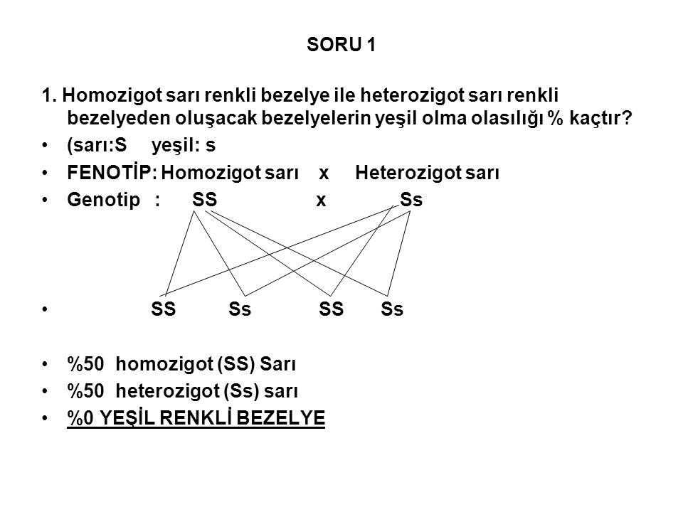 SORU 1 1. Homozigot sarı renkli bezelye ile heterozigot sarı renkli bezelyeden oluşacak bezelyelerin yeşil olma olasılığı % kaçtır