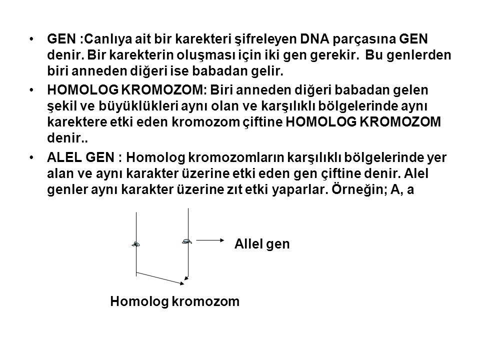 GEN :Canlıya ait bir karekteri şifreleyen DNA parçasına GEN denir