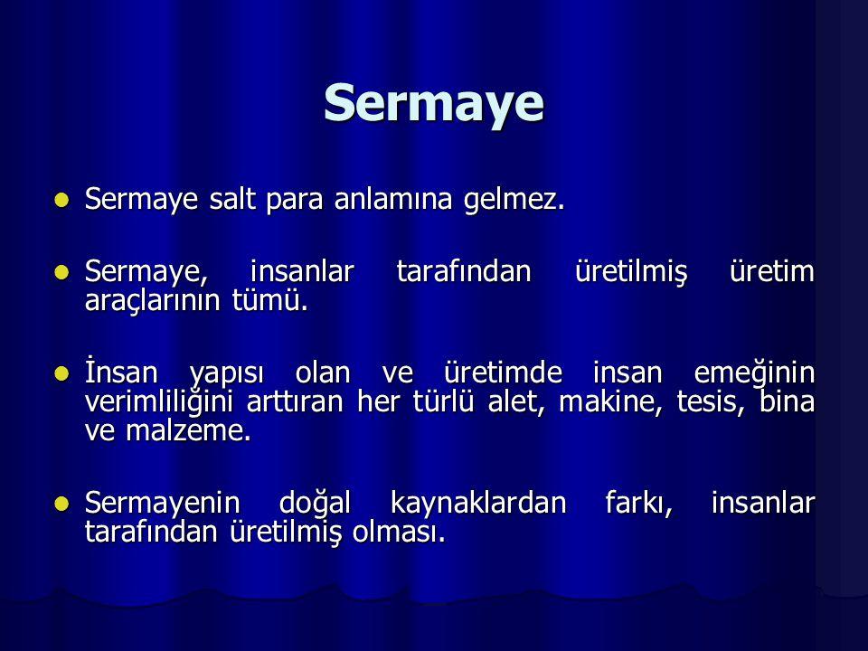 Sermaye Sermaye salt para anlamına gelmez.