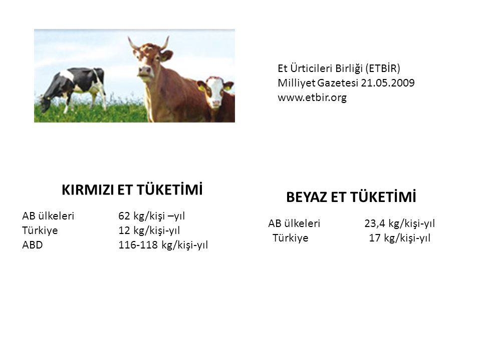 AB ülkeleri 23,4 kg/kişi-yıl