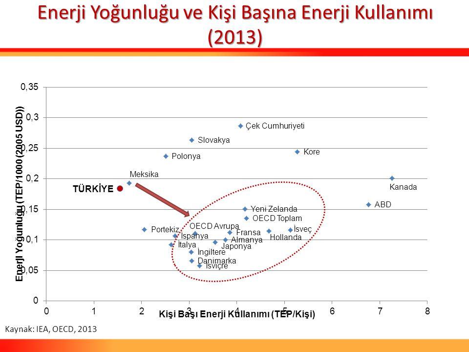 Enerji Yoğunluğu ve Kişi Başına Enerji Kullanımı (2013)