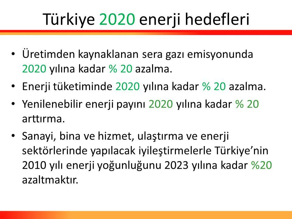 Türkiye 2020 enerji hedefleri