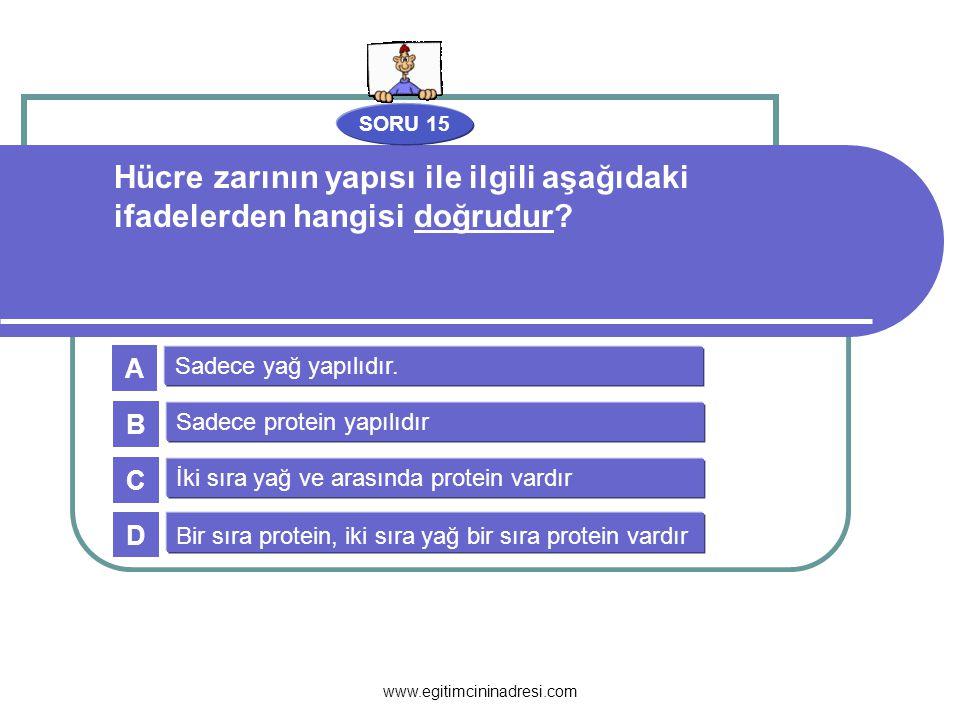 SORU 15 Hücre zarının yapısı ile ilgili aşağıdaki ifadelerden hangisi doğrudur A. Sadece yağ yapılıdır.