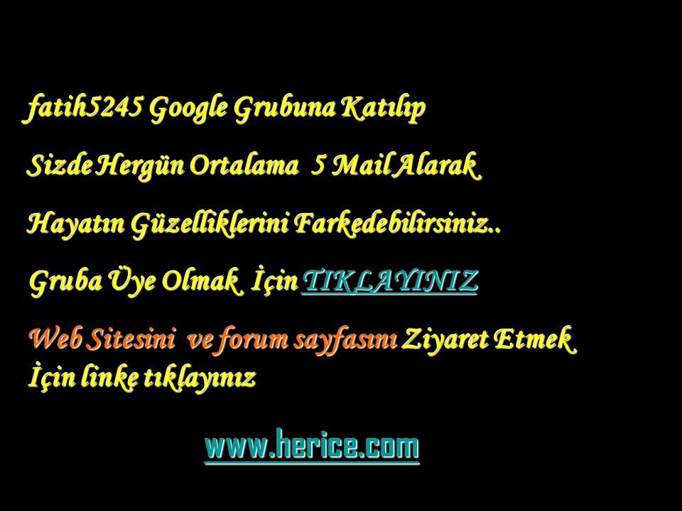 www.herice.com fatih5245 Google Grubuna Katılıp