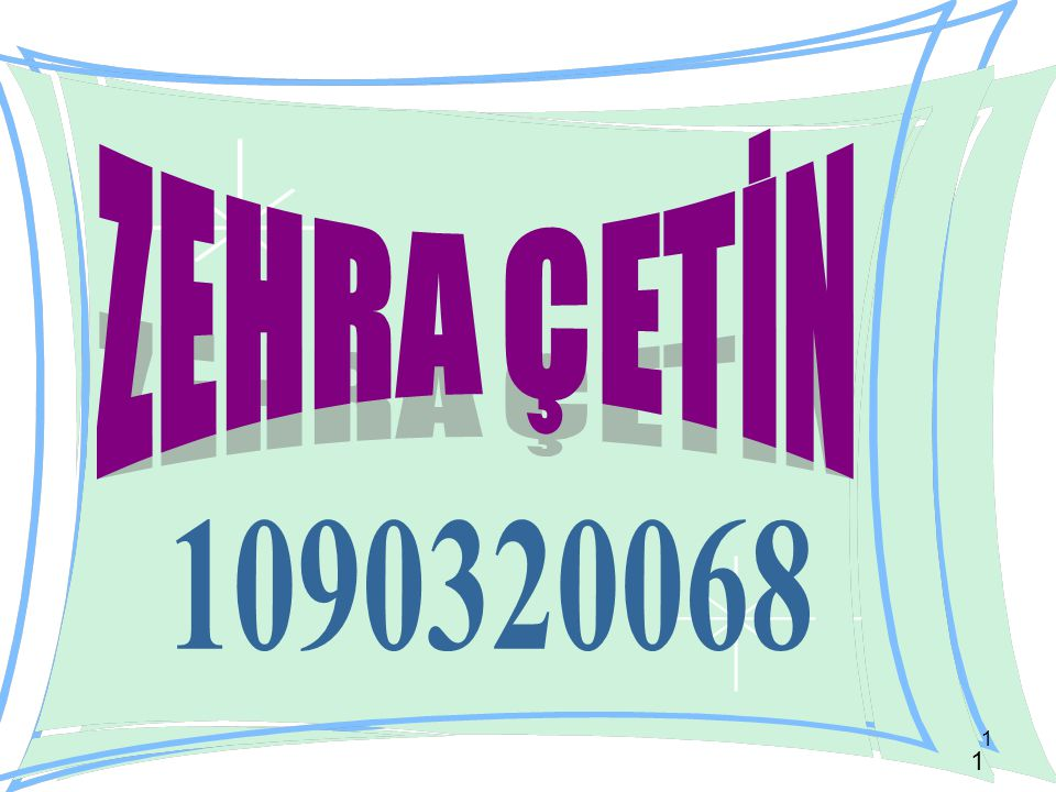 ZEHRA ÇETİN 1090320068
