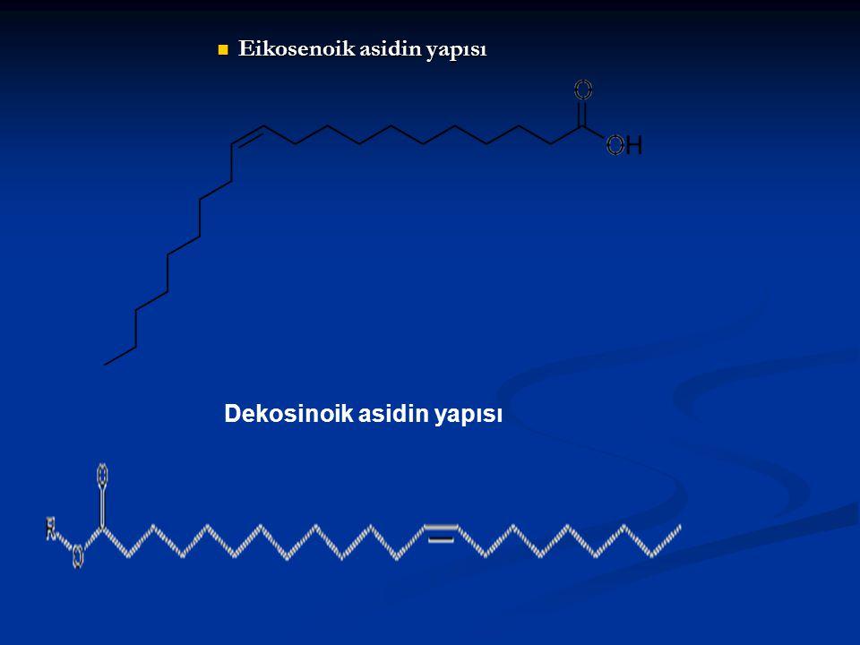 Eikosenoik asidin yapısı