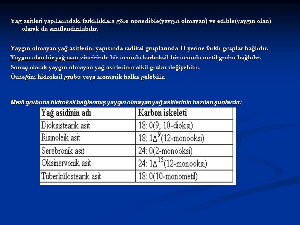 Sonuç olarak yaygın olmayan yağ asitlerinin alkil grubu değişebilir.
