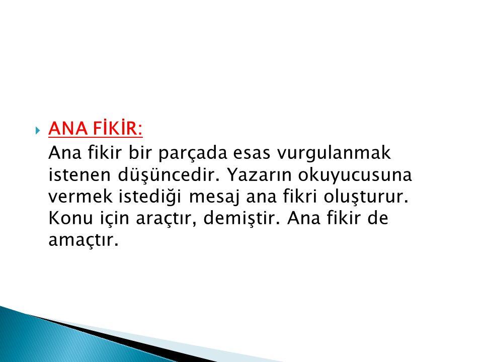 ANA FİKİR:
