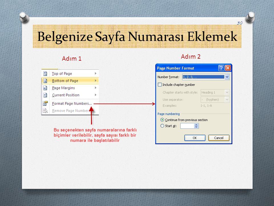 Belgenize Sayfa Numarası Eklemek