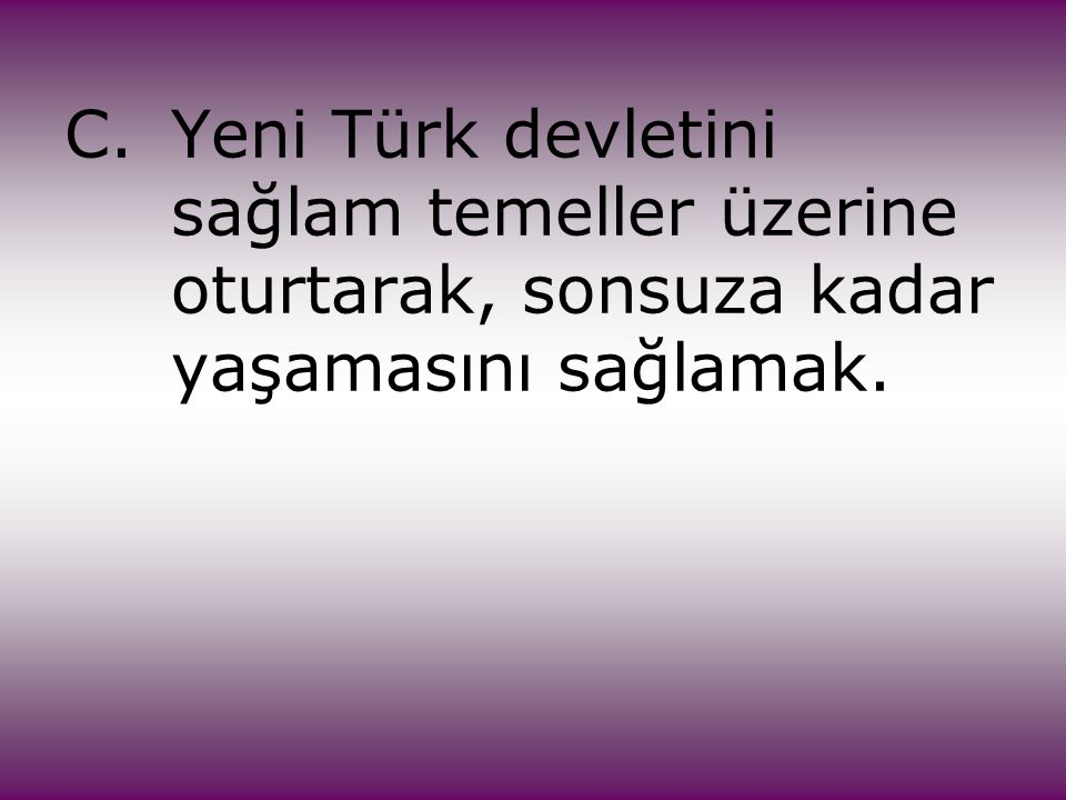 C. Yeni Türk devletini. sağlam temeller üzerine