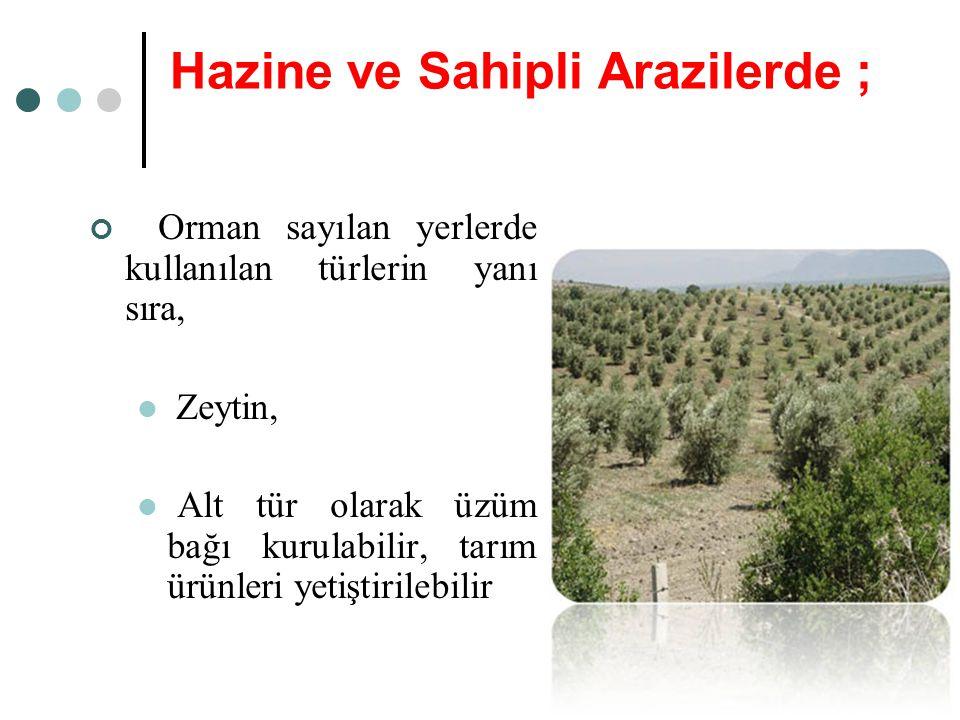 Hazine ve Sahipli Arazilerde ;