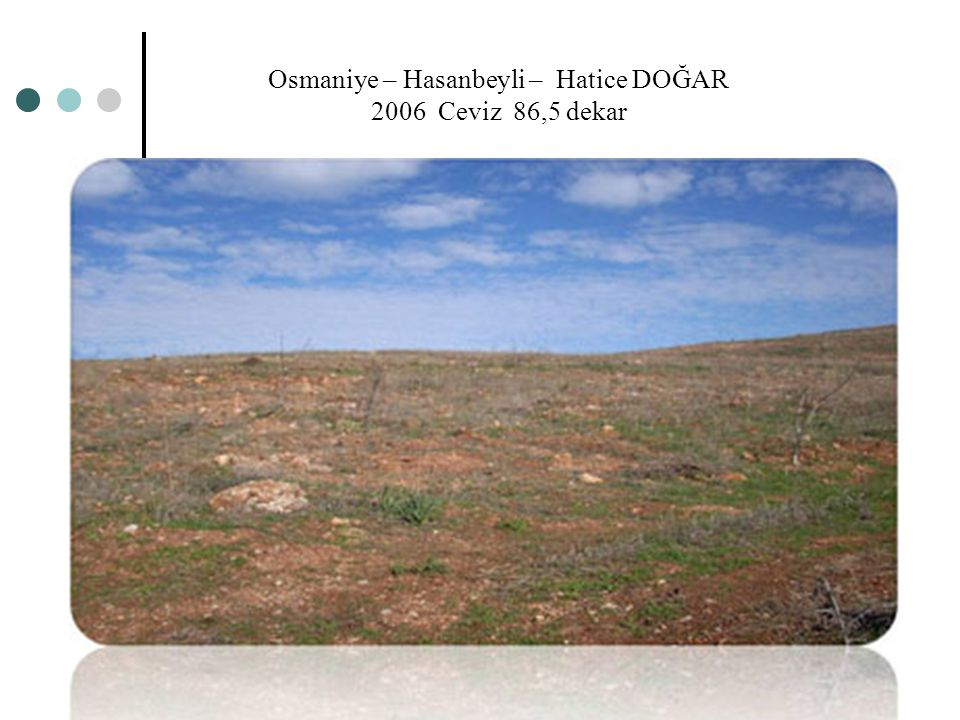 Osmaniye – Hasanbeyli – Hatice DOĞAR 2006 Ceviz 86,5 dekar