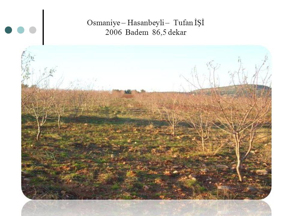 Osmaniye – Hasanbeyli – Tufan İŞİ 2006 Badem 86,5 dekar