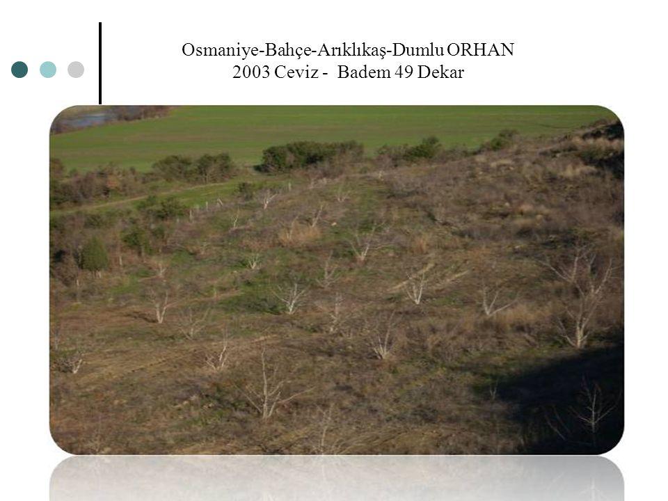 Osmaniye-Bahçe-Arıklıkaş-Dumlu ORHAN 2003 Ceviz - Badem 49 Dekar