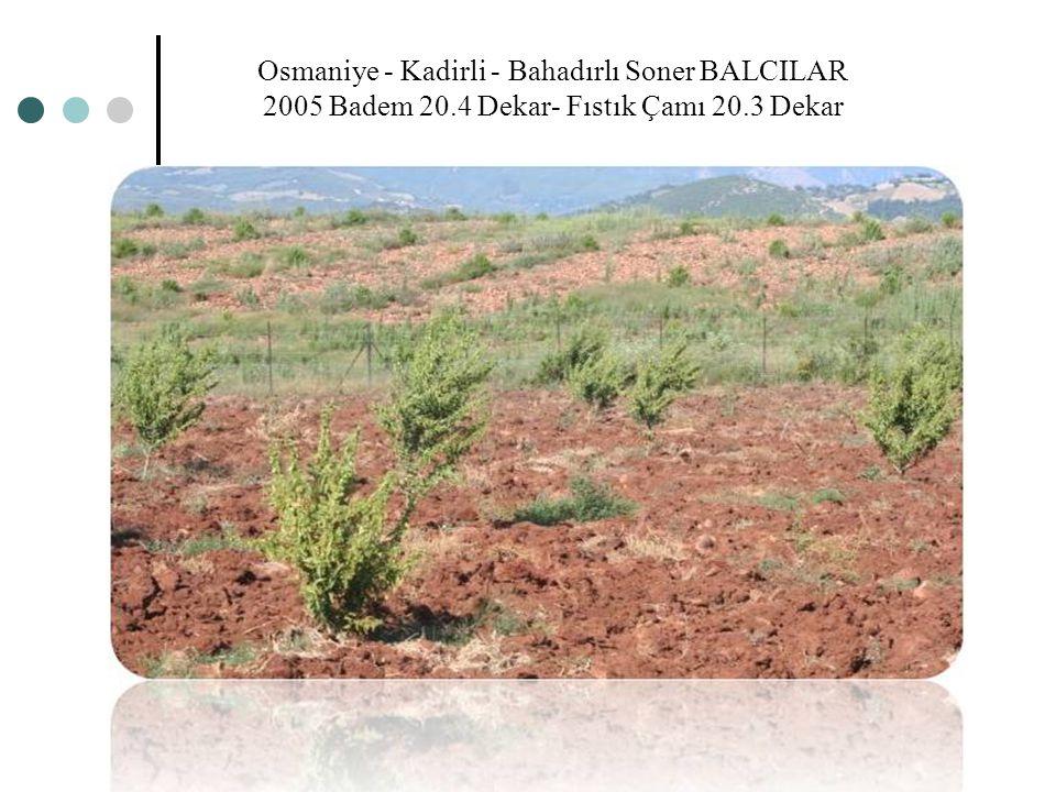 Osmaniye - Kadirli - Bahadırlı Soner BALCILAR 2005 Badem 20