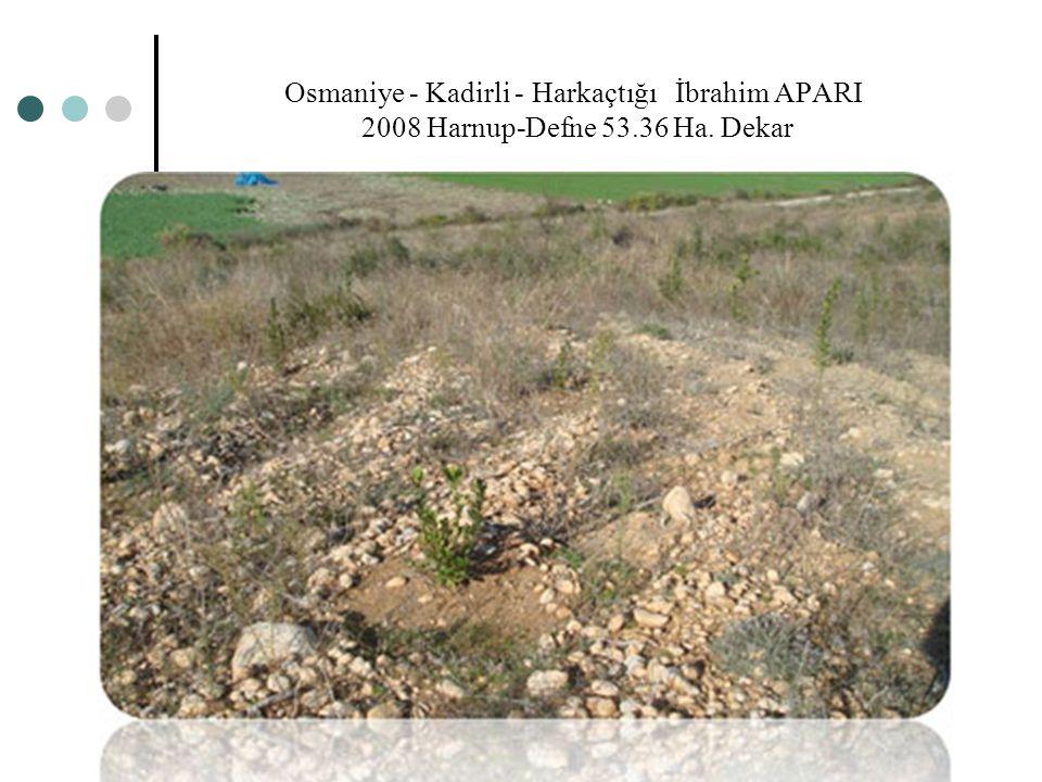 Osmaniye - Kadirli - Harkaçtığı İbrahim APARI 2008 Harnup-Defne 53