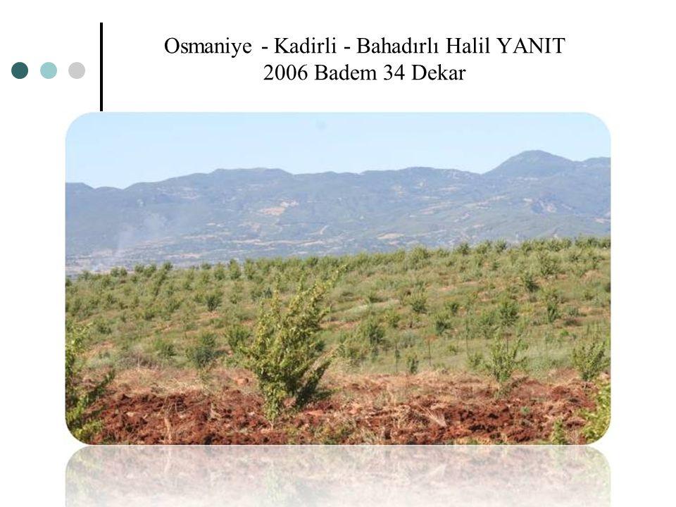 Osmaniye - Kadirli - Bahadırlı Halil YANIT 2006 Badem 34 Dekar